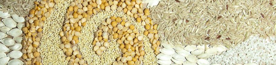 Поскольку соевые бобы содержат крахмал, они отличаются также высоким содержанием полиненасыщенных жиров